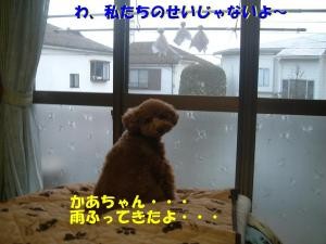 20060407183826.jpg