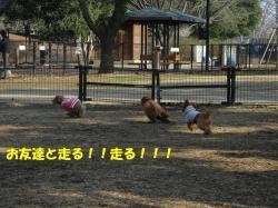 20070118135010.jpg