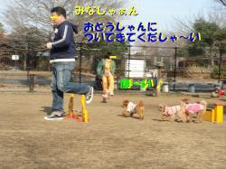 20070118142211.jpg
