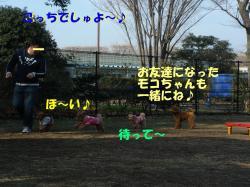 20070118143039.jpg