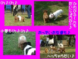 20071101143224.jpg