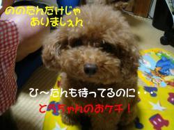 20071103140806.jpg