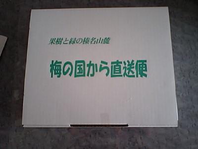 20080309IMG_0009.jpg