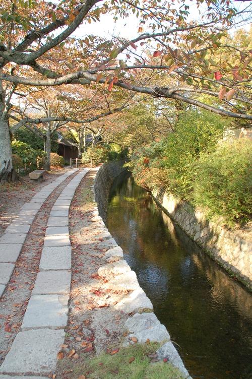 京都_哲学の道_02