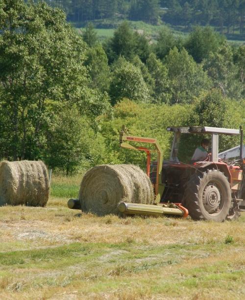 牧草をラッピング