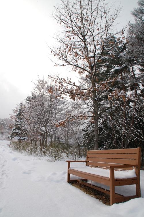 安曇野公園@2012冬_ベンチ