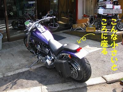 h-IMG_1191.jpg