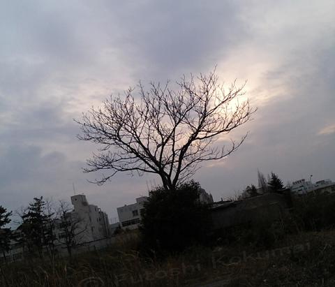06_02_19_1.jpg