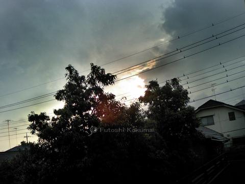06_09_01_2.jpg