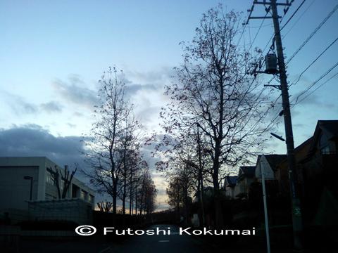 06_12_11_1.jpg