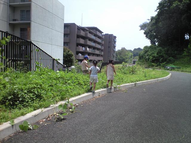 08_07_20_01.jpg