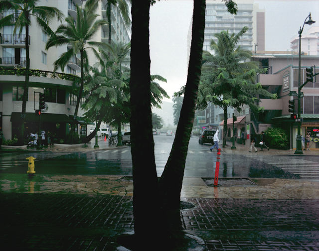 ex_08_rain_tree_2.jpg
