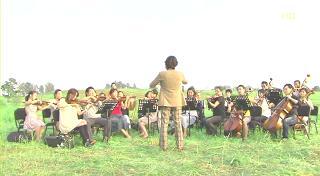 野原の演奏