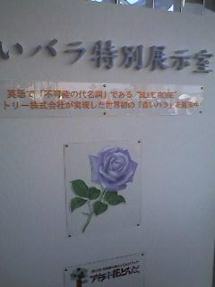 20051104223319.jpg