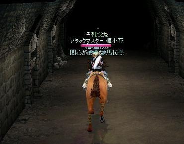 馬がこんな状態とかどんだけ