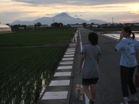 ⑫さあ、山に向かって歩こう!!