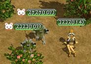 20060118000934.jpg