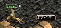 20060425124135.jpg