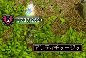 20060806210801.jpg