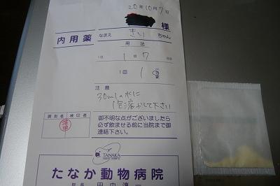 kotaroP1000532.jpg