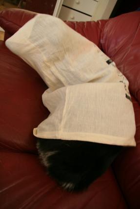 ハム袋でうごめくソーセージ犬