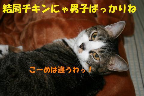 001_convert_20100510230617.jpg