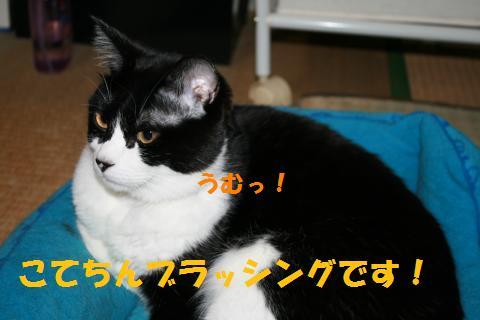 001_convert_20100516222418.jpg