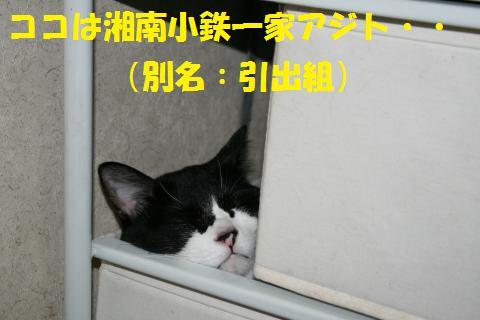 001_convert_20100705225510.jpg