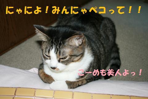 001_convert_20100728214653.jpg