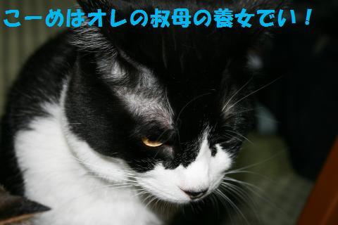 001_convert_20100812184838.jpg