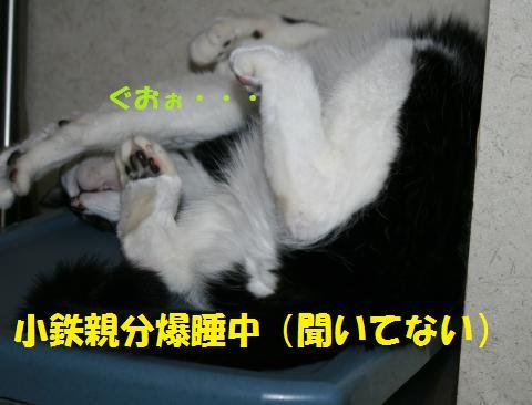 001_convert_20100820230142.jpg