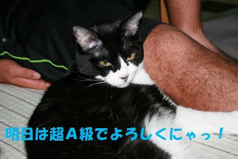 001_convert_20100918161649.jpg