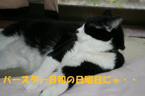 001_convert_20100919213213.jpg
