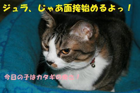 001_convert_20101028161509.jpg