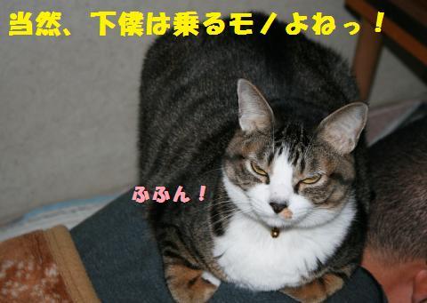 001_convert_20110102212922.jpg