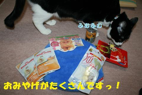001_convert_20110127230405.jpg