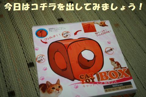 001_convert_20110802180210.jpg