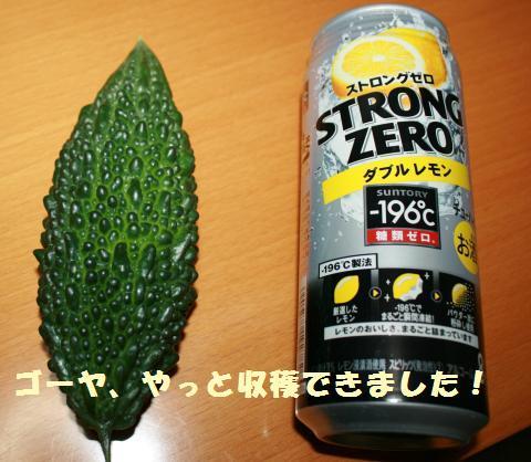 001_convert_20110807154624.jpg