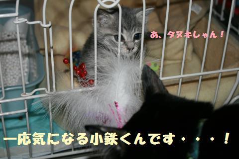 001_convert_20111018231254.jpg
