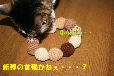 002_convert_20100805200540.jpg