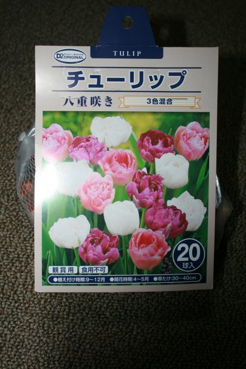 002_convert_20101202172913.jpg
