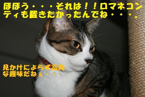 002_convert_20101217210119.jpg