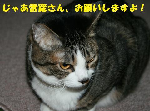 002_convert_20110417210356.jpg
