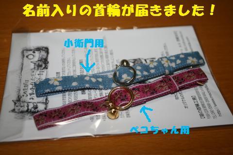 002_convert_20110505213757.jpg