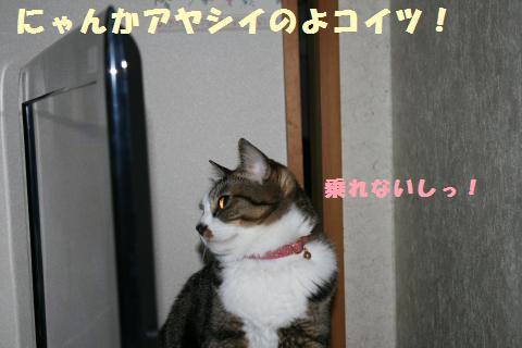 002_convert_20110531213059.jpg