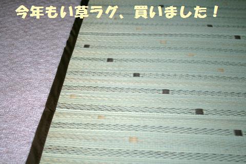002_convert_20110705225613.jpg