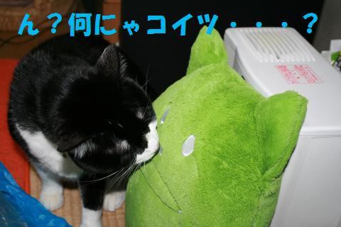003_convert_20100214205201.jpg