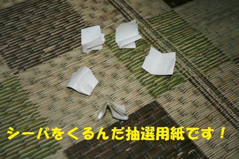 003_convert_20101110191859.jpg