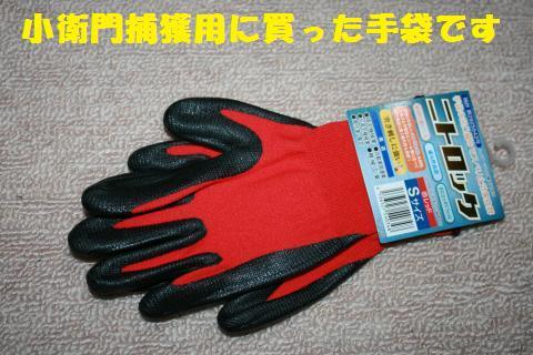 003_convert_20110329230310.jpg