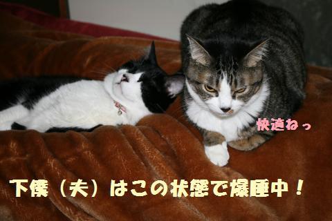 003_convert_20110602220540.jpg